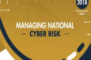 Paper on Cyber Risk for the Organization of American States