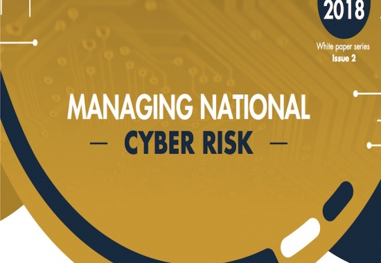 Managing National Cyber Risk into Simplified Chinese